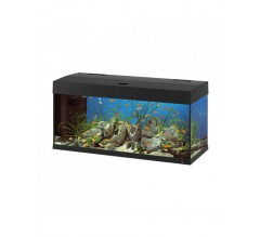 DUBAI 100 LED BLACK - 190 L